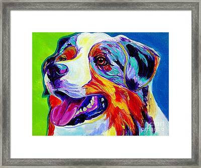 Aussie Framed Print by Alicia VanNoy Call