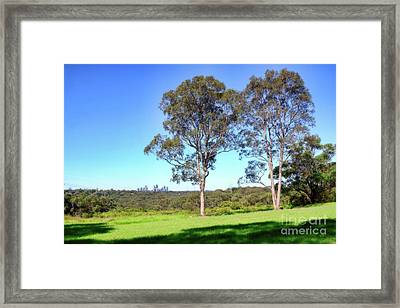 Framed Print featuring the photograph Aussie Gum Tree Landscape By Kaye Menner by Kaye Menner
