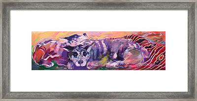 Aussies On An Indian Blanket Framed Print by Ron Patterson