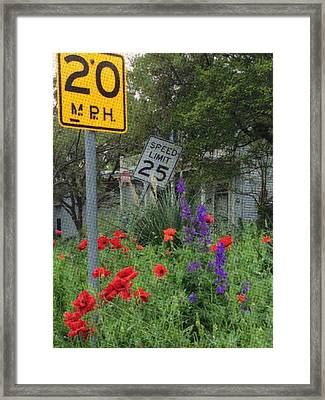 Austin 2015 Framed Print by Cooky Goldblatt