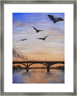 Austin Bats Take Flight Framed Print by Robert Plog