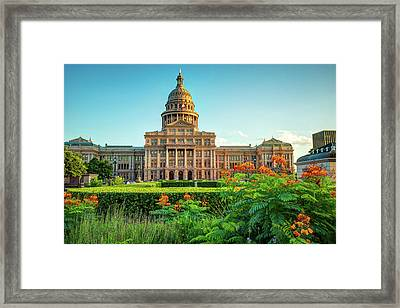 Austin Texas State Capitol Building And Flower Garden Framed Print