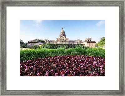 Austin Texas State Capitol Building Flowers Framed Print
