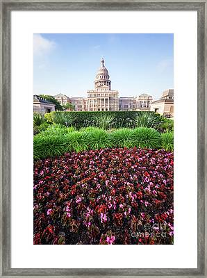 Austin Texas State Capitol Flowers Framed Print by Paul Velgos