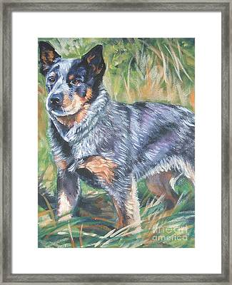 Australian Cattle Dog 1 Framed Print by Lee Ann Shepard