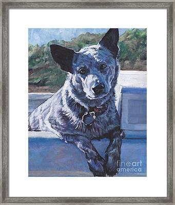 Australian Cattle Dog Blue Heeler Framed Print by Lee Ann Shepard