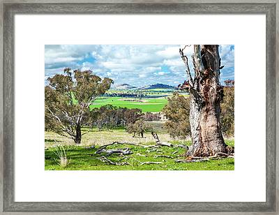 Australian Countryside Framed Print