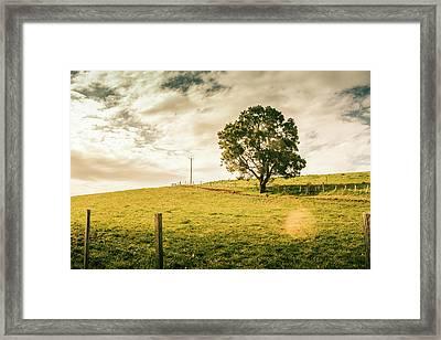 Australian Farm Charm Framed Print by Jorgo Photography - Wall Art Gallery