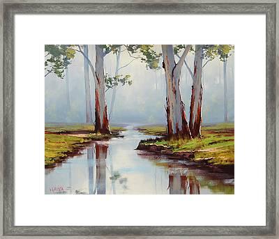 Australian Gum Trees Framed Print by Graham Gercken