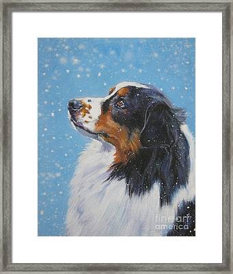 Australian Shepherd In Snow Framed Print by Lee Ann Shepard