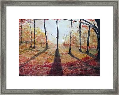 Automn Light Framed Print by Annie Poitras