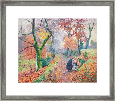 Automne Dans La Creuse Framed Print by MotionAge Designs