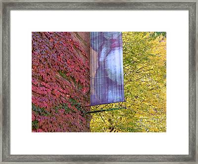Autum Colors Framed Print by Robyn Leakey