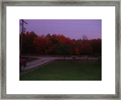 Autum Glow Framed Print by Rebecca  Fitchett