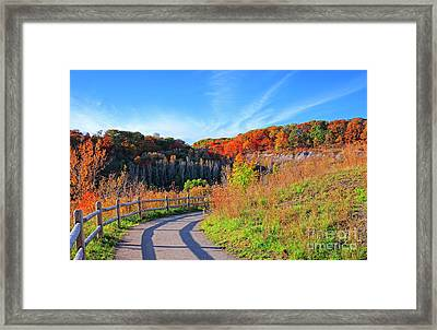 Autumn Hiking Trail Framed Print by Charline Xia