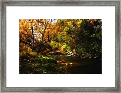 Autum Spring Framed Print by Mark Courage
