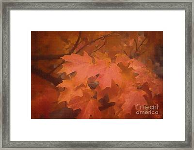 Autumn 2 Framed Print