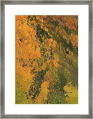 Autumn Abstract Number 3 Framed Print by Dan Sproul