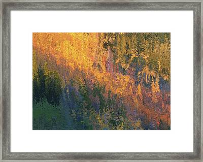 Autumn Abstract Number 4 Framed Print