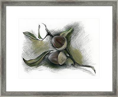 Autumn Acorns On An Oak Twig Framed Print
