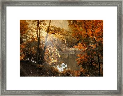 Framed Print featuring the photograph Autumn Afterglow by Jessica Jenney