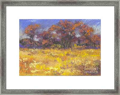 Autumn Afternoon Framed Print by Grace Goodson