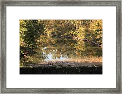 Autumn Afternoon Framed Print by Lone Dakota Photography