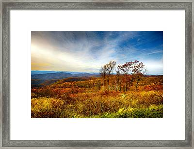 Autumn Afternoon Framed Print by Renee Sullivan