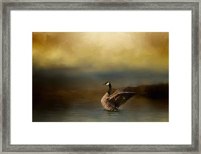Autumn Afternoon Splash Framed Print by Jai Johnson
