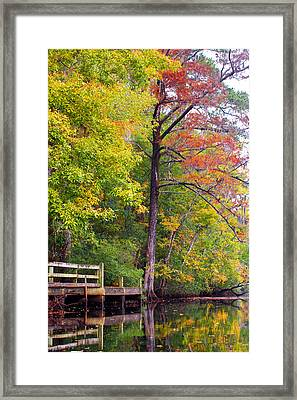 Autumn Along Brices Creek Framed Print by Bob Decker