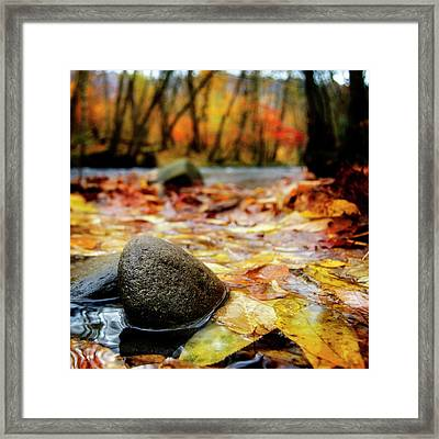 Autumn Along The Oconaluftee River Framed Print