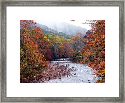 Autumn Along Williams River Framed Print by Thomas R Fletcher
