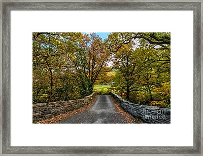 Autumn Ambiance Framed Print by Adrian Evans