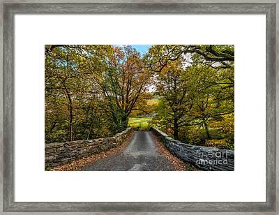 Autumn Ambiance Framed Print