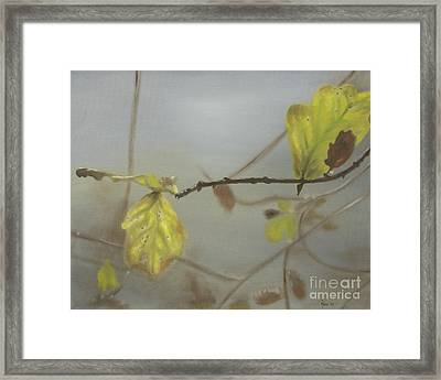 Autumn Framed Print by Annemeet Hasidi- van der Leij