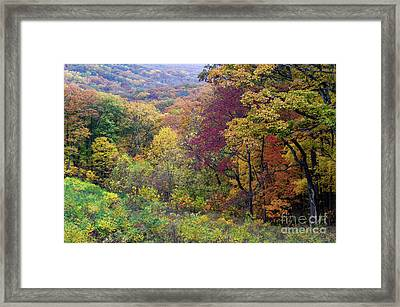 Framed Print featuring the photograph Autumn Arrives In Brown County - D010020 by Daniel Dempster