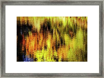 Autumn Art Framed Print by Vishwanath Bhat