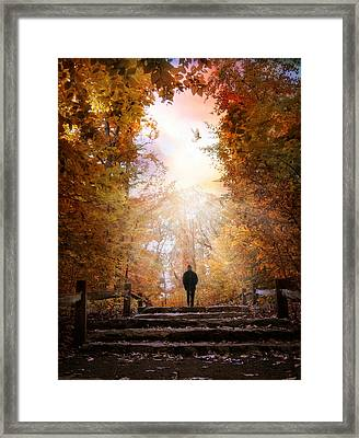Autumn Ascension Framed Print