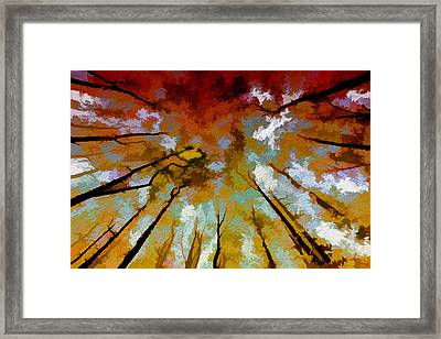 Autumn Ascent Framed Print