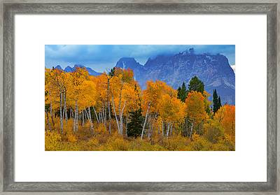 Autumn Aspens Below Mount Moran Framed Print by Joseph Rossbach