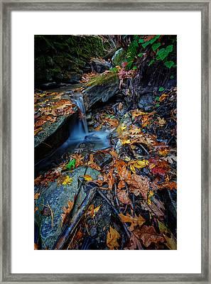 Autumn At A Mountain Stream Framed Print by Rick Berk