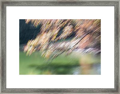 Framed Print featuring the photograph Autumn At Allerton Pond by Deborah Hughes