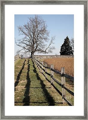 Autumn At Antietam Framed Print