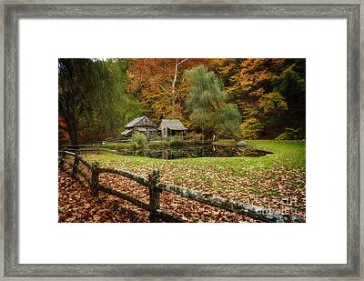 Autumn At Cuttalossa Farm V Framed Print by Debra Fedchin