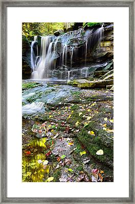 Autumn At Elakala Framed Print