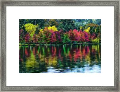 Autumn At Green Lake Seattle Framed Print by Yulia Kazansky