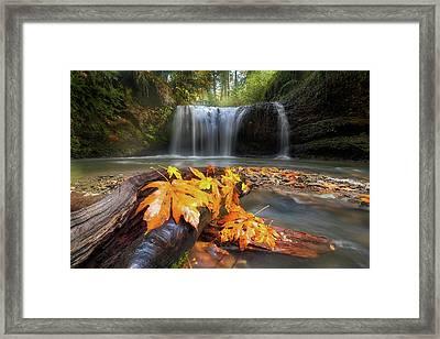 Autumn At Hidden Falls Framed Print by David Gn