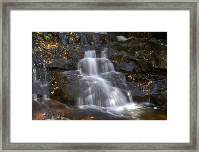 Autumn At Laurel Falls Framed Print by Darrell Young