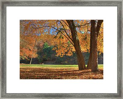 Framed Print featuring the photograph Autumn At Lykens Glen by Lori Deiter