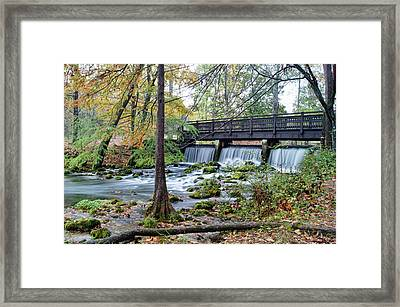 Framed Print featuring the photograph Autumn At Maramec Spring by Cricket Hackmann